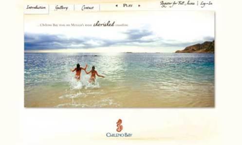 Chileno Website