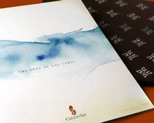 Chileno Brochure